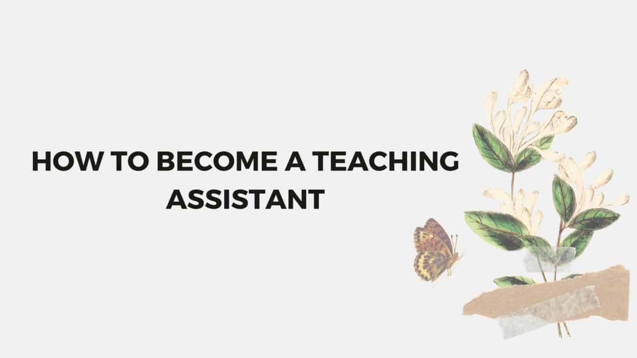 become a teaching assistant in Spain