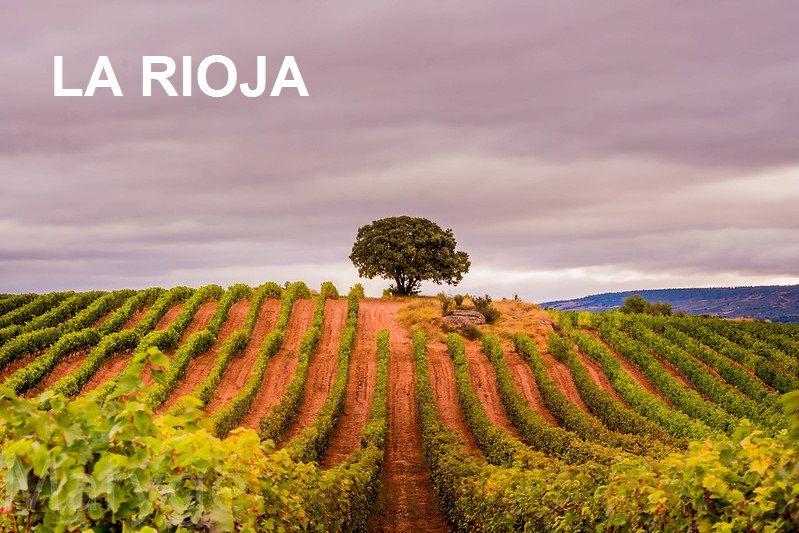 La Rioja Region in Spain
