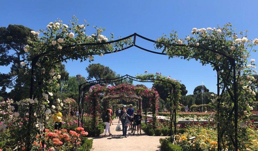 Rose park Retiro