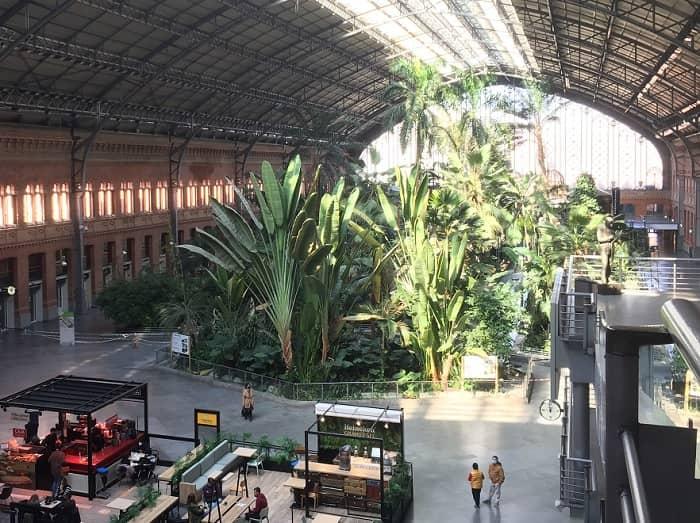 Atocha train station inside garden free visit